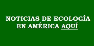 banner eco america